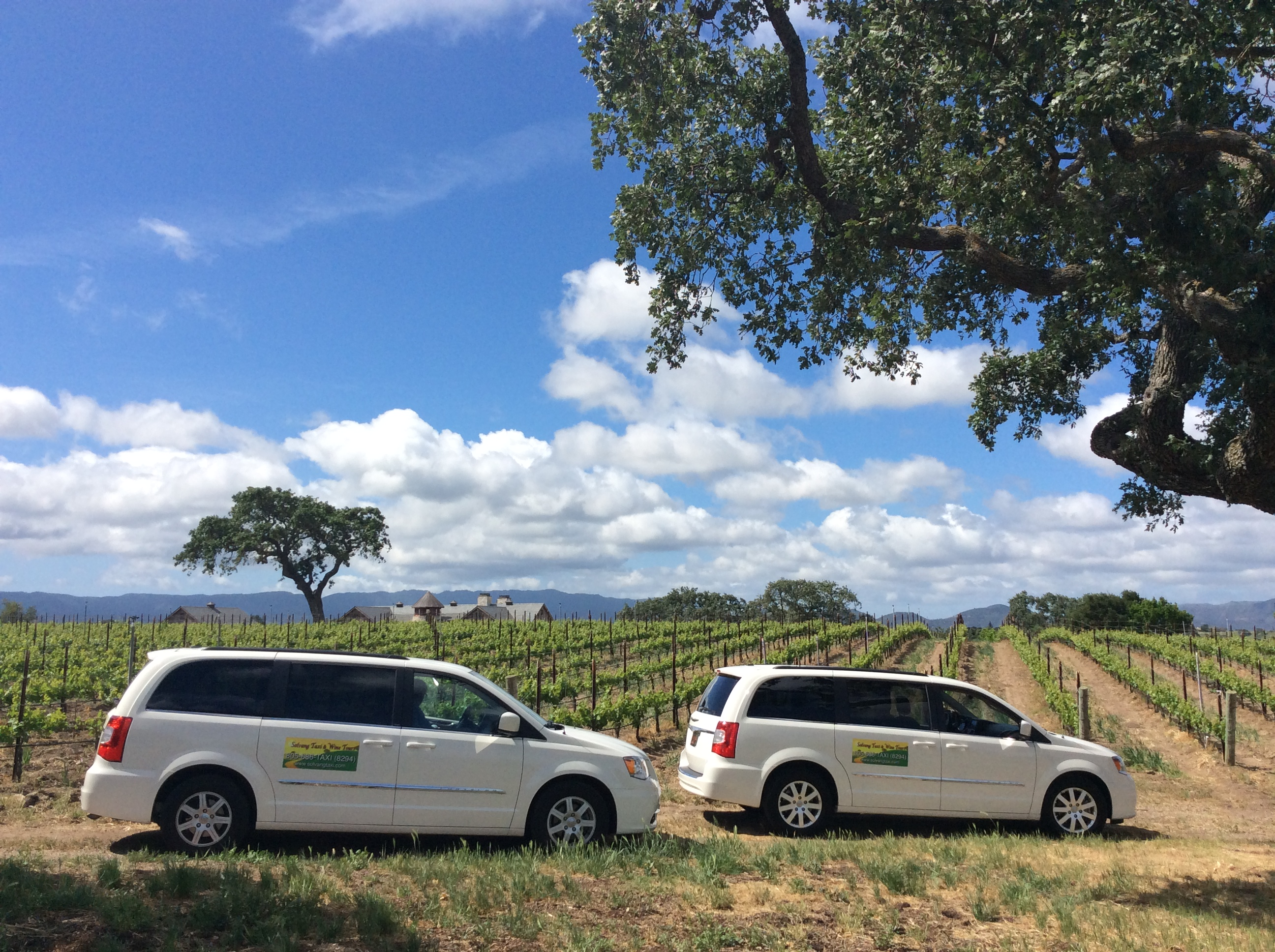 limo mini van luxury wine tours taxi