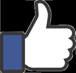 Facebook Homosassa River Restoration Project