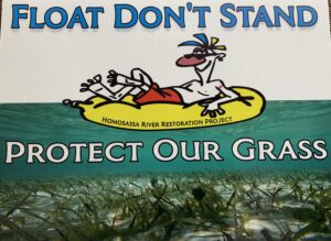 float don't stand, protect aquatic grass