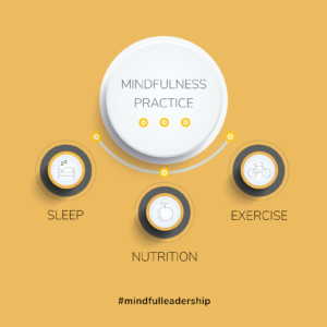 Grant Gamble Business Consulting | Blog | Mindful Leadership Practice Infographic