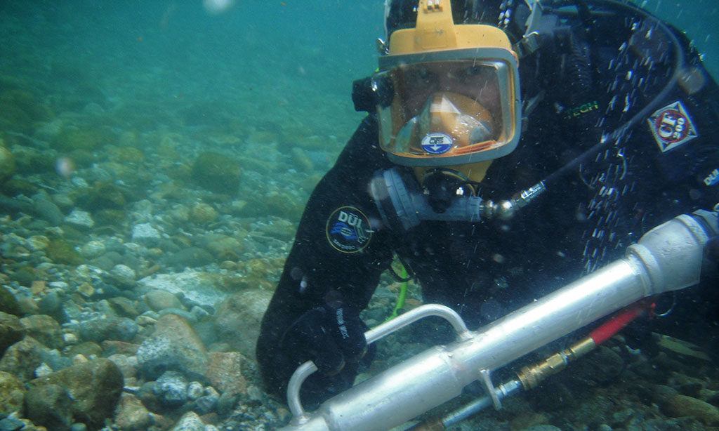 Diver Extracting Eggs from a salmon Redd