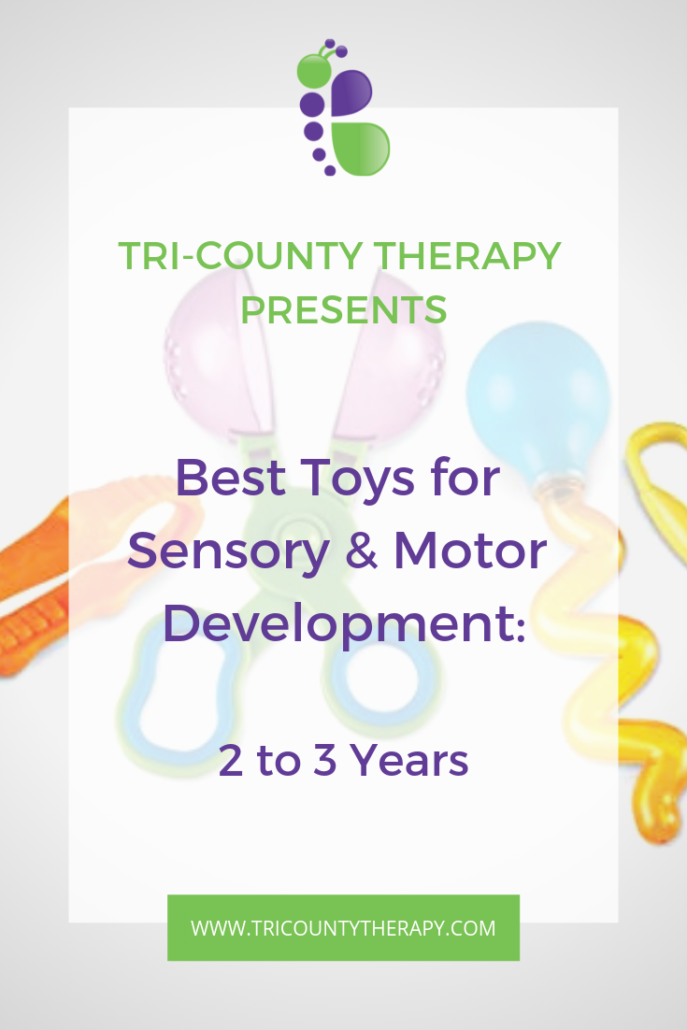 Sensory and Motor Toys: 2 to 3 Years