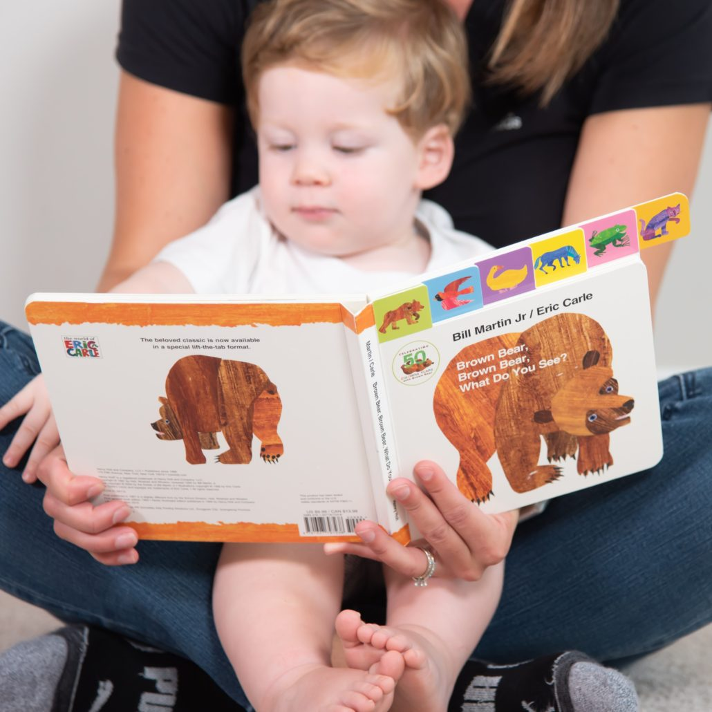 Brown Bear Book