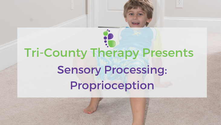 Tri County Therapy, Pediatric Therapy, Speech Therapy Charleston, Speech Therapy Greenville
