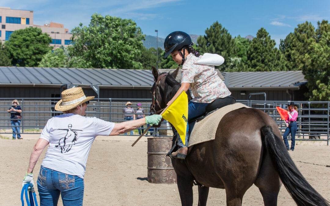 Therapy horse Dusty waits patiently as his rider reaches for a flag