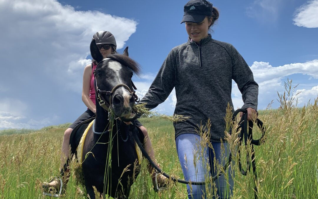 Harley and his rider on a trail ride during an adaptive riding class.