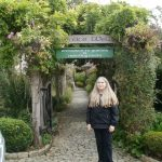 Chalice Well Gardens, Glastonbury — p8290178