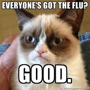 grumpy cat flu meme