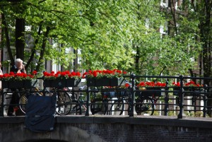 flowers along a canal bridge in amsterdam