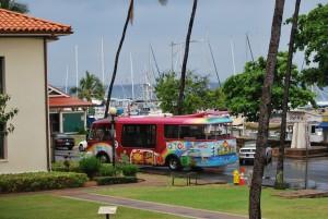 maui hawaii lāhainā pink public transport bus with whale tail
