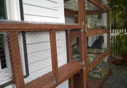 Backyard Catio – Part 18