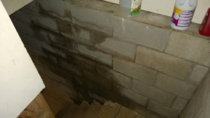 water in basement from hose leak on outside of house