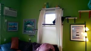 2 new living room cat platforms for birdie