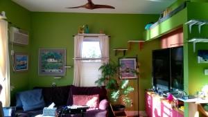 living room cat shelves