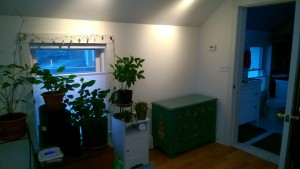 condo bedroom showing green bureau without tv
