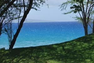 maui hawaii ulua beach