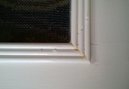 DIY Screen Door – Part 2