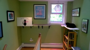birdie and her new litter box and privacy screen in the upstairs hallway