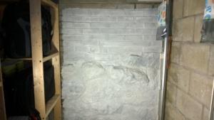 after one coat of drylok masonry waterproofer