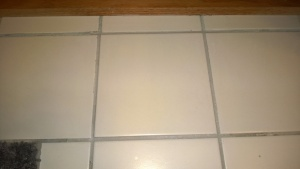 i replaced the cracked tile in the master bathroom