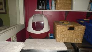 raspberry litter box for laundry room
