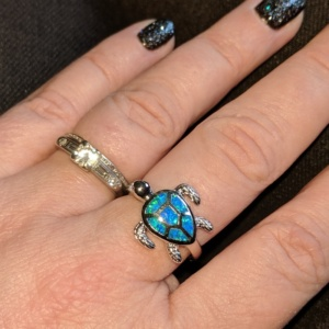 the turtle ring hubby gave me for our 7th anniversary
