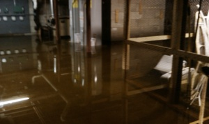 """jim's photo of the basement showing 21"""" of water"""