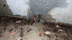 the drylok hydraulic cement patches didn't work during the basement flood
