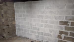 painting white drylok waterproofing sealant on the basement wall