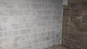 one coat of white drylok waterproofing sealant on the basement wall