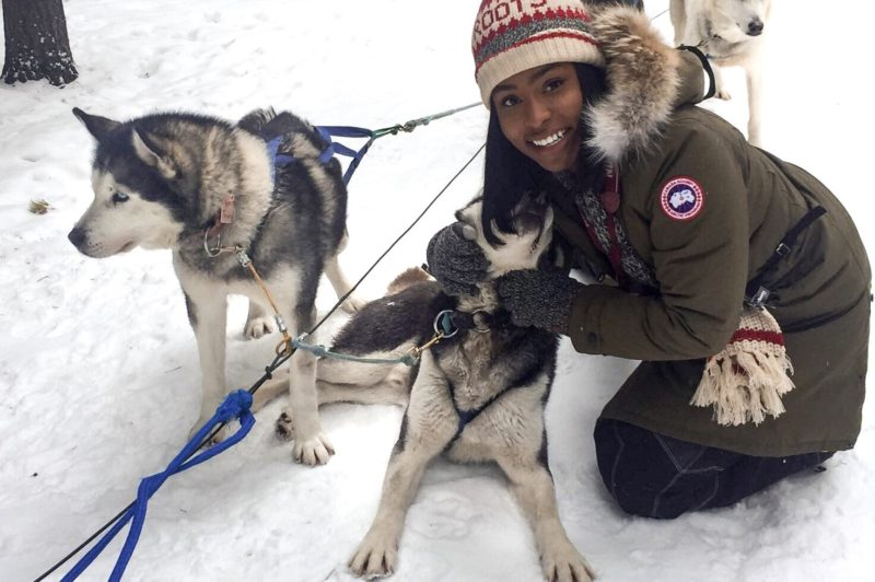 Dog Sledding in Banff - The Jeneralist