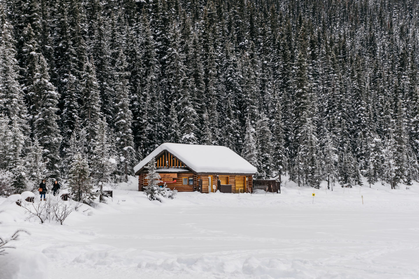 Why You Should Make The Best of Winter | The Jeneralist