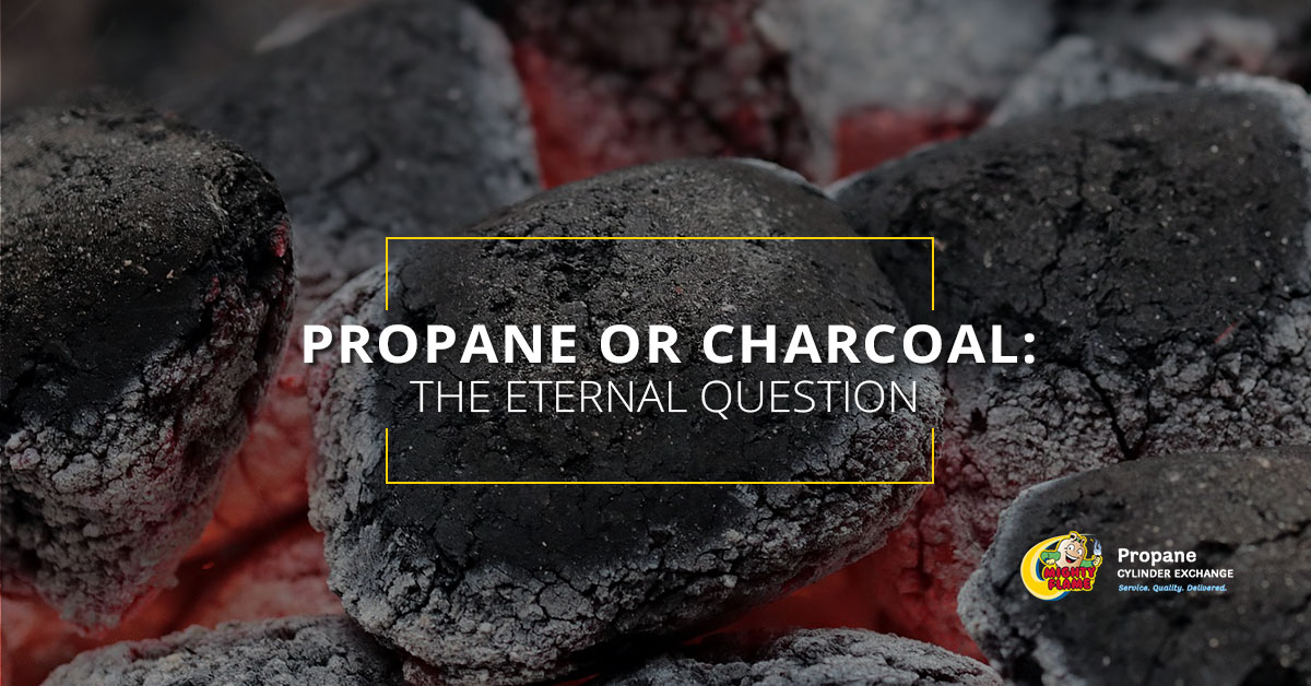 Propane or Charcoal: The Eternal Question