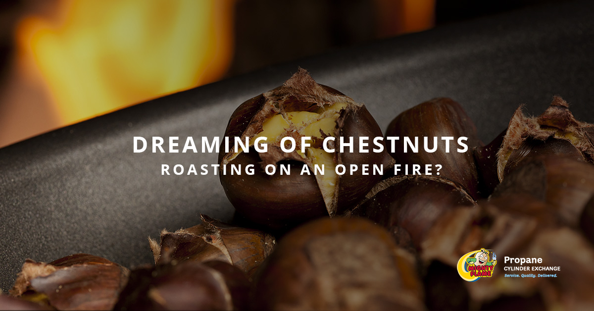 Dreaming of Chestnuts Roasting on an Open Fire?
