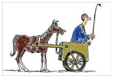 Word Problems: Don't Put the Cart Before the Horse