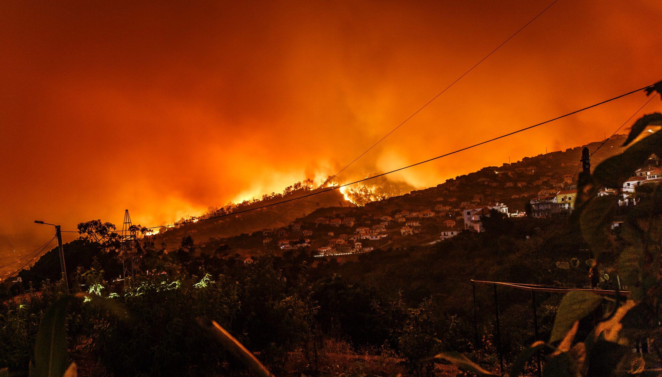 Wildfire Preparedness & Defensible Space