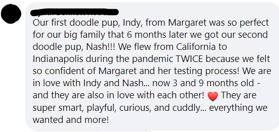 NashIndyTestimonial