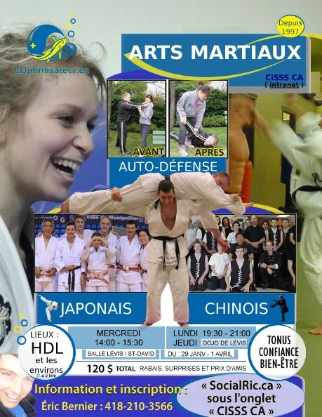 Arts martiaux CISSS CA