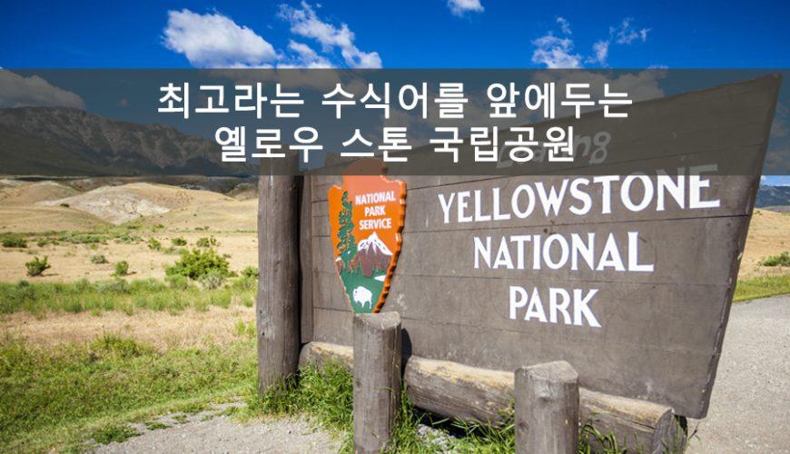 옐로우스톤 국립공원