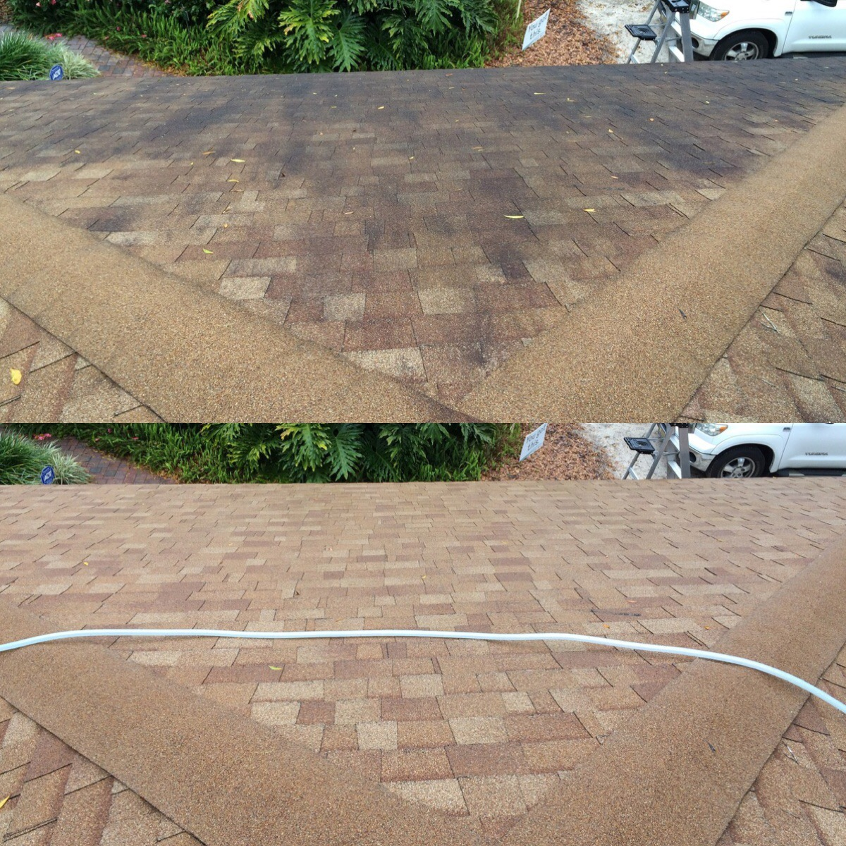 gainesville roof cleaning