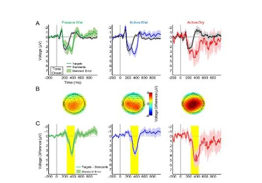 Dry EEG Electrodes Reading