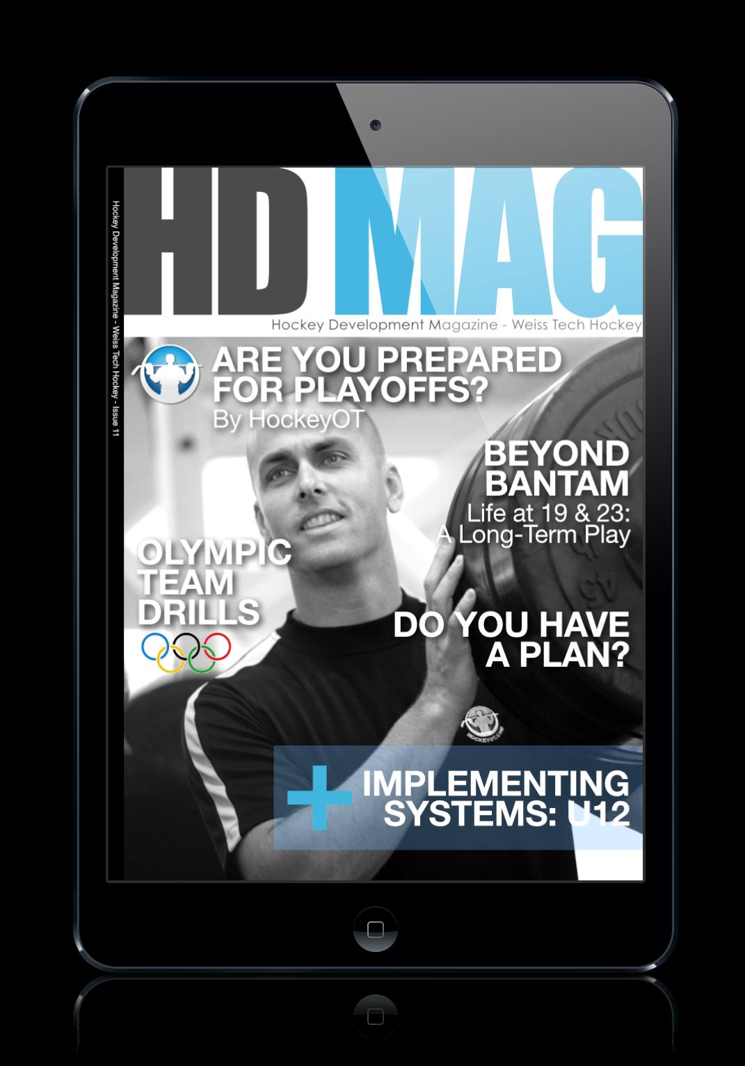 issue11mini