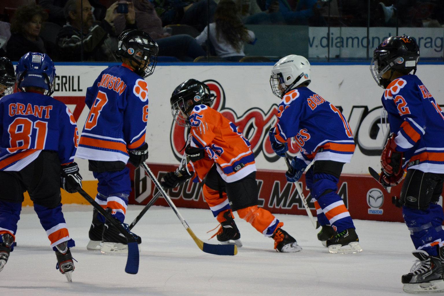 Hockey Equipment Tips for Kids