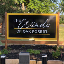Winds of Oak Forest