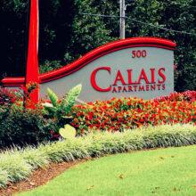 Calais Forest