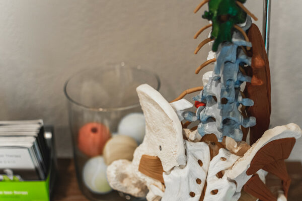 Pro Spine & Sport