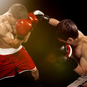 Westover Capital Advisors - Boxers