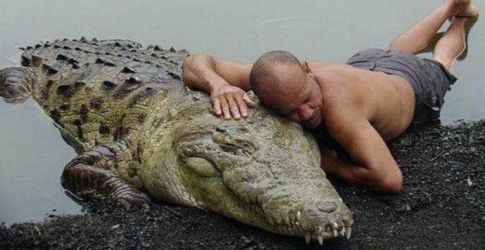 Amazing True Story Of How A Fisherman Saved A Crocodile & Became His Best Friend (With Photos & Video)