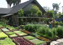 Learn How This Family Grows 6,000 Lbs Of Food on Just 1/10th Acre!