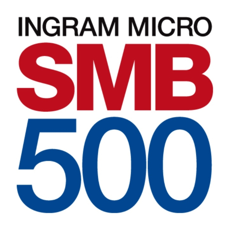 SMB500_pillow